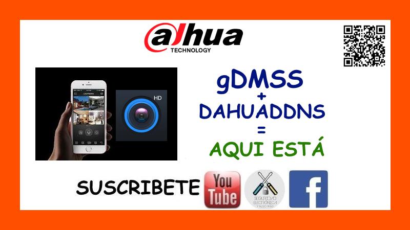 gDMSS + DAHUADDNS